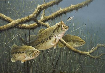 Hittin It Hard by Lambson's Wildlife Art art print