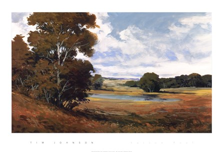 Sutton Pool by Tim Johnson art print