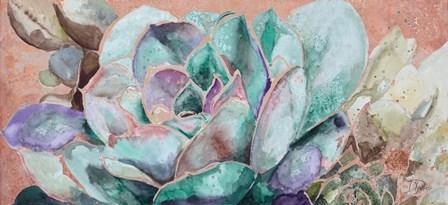 Desert Flower on Terra Cotta by Patricia Pinto art print