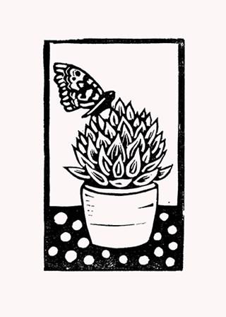 Black Succulent by Lisa Kesler art print