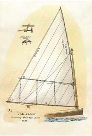 Nautilus III art print