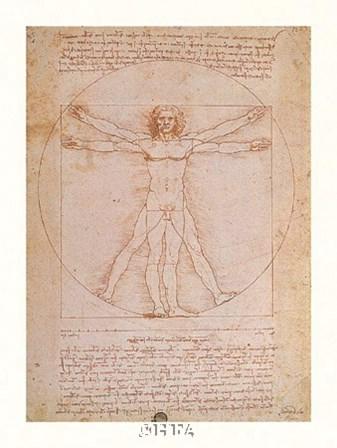 Study of Human Proportions by Leonardo Da Vinci art print
