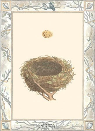 Woodland Nest IV art print