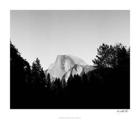 Half Dome In Trees by Tucker Smith art print