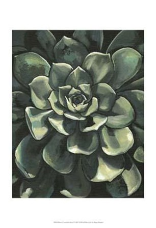 Printed Lunar Succulent I by Megan Meagher art print