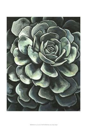 Printed Lunar Succulent II by Megan Meagher art print