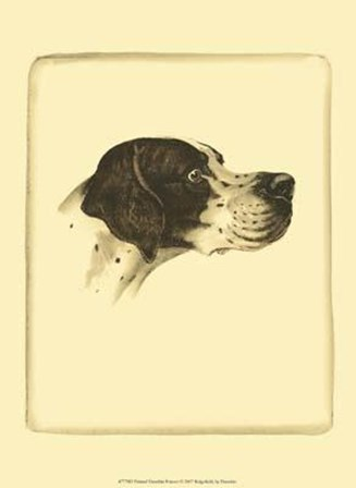 Printed Danchin Pointer art print