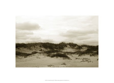 Ocracoke Dune Study III by Jason Johnson art print
