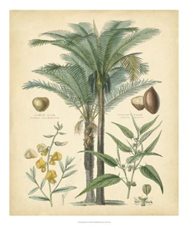 Fruitful Palm I by Vision Studio art print