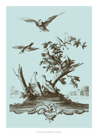 Avian Toile IV by Vision Studio art print