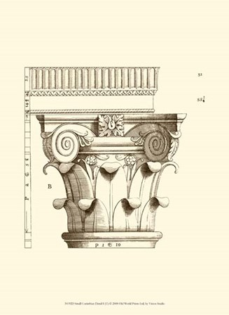 Small Corinthian Detail I (U) by Vision Studio art print