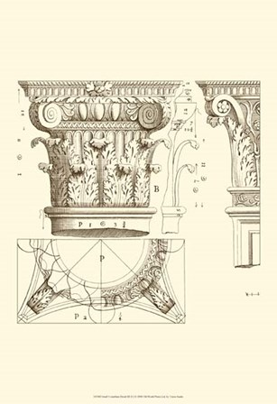 Small Corinthian Detail III (U) by Vision Studio art print