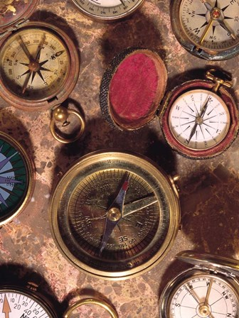 Antique Compass Collage by Vision Studio art print