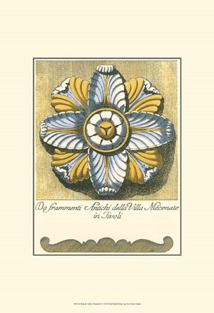 Blue & Yellow Rosette II by Vision Studio art print