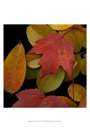 Small Vivid Leaves III by Vision Studio art print