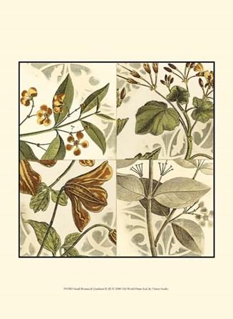 Small Botanical Quadrant II (P) by Vision Studio art print