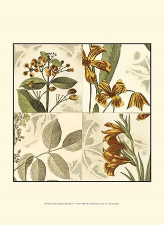 Small Botanical Quadrant IV (P) by Vision Studio art print