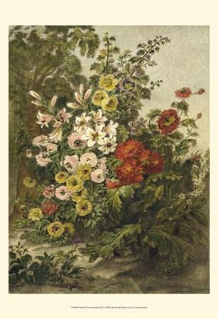 Small Flower Garden (P) by Vision Studio art print