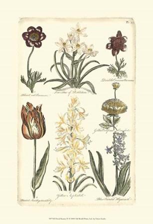 Floral Bounty IV by Vision Studio art print