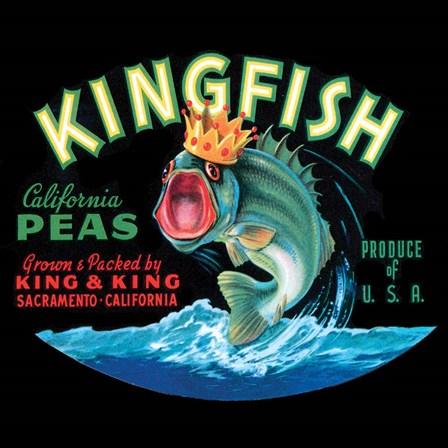 Kingfish by Vision Studio art print