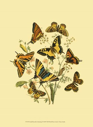 Small Butterfly Gathering I by Vision Studio art print
