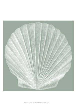 Seabreeze Shells II (P) by Vision Studio art print