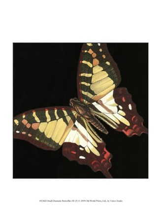 Small Dramatic Butterflies III by Vision Studio art print