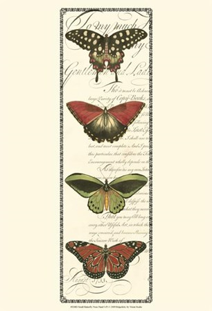 Small Butterfly Prose Panel I by Vision Studio art print