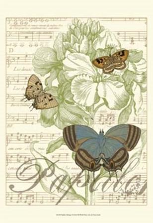Papillon Melange I by Vision Studio art print