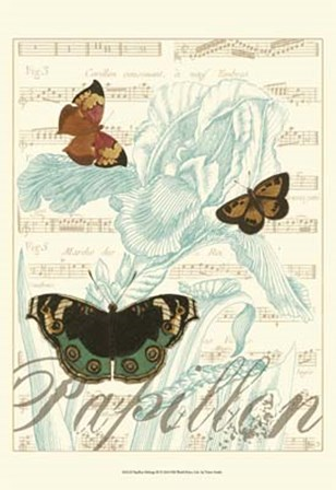 Papillon Melange III by Vision Studio art print