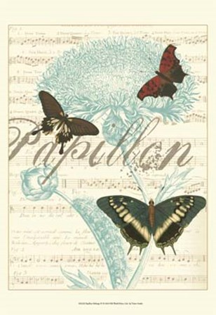 Papillon Melange IV by Vision Studio art print