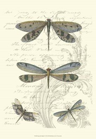 Dragonfly Delight I by Vision Studio art print