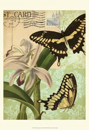 Nature's Tapestry II by Vision Studio art print