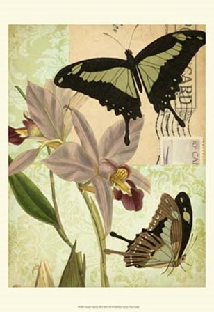 Nature's Tapestry III by Vision Studio art print