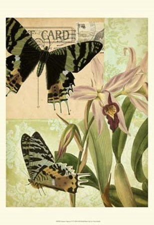 Nature's Tapestry IV by Vision Studio art print