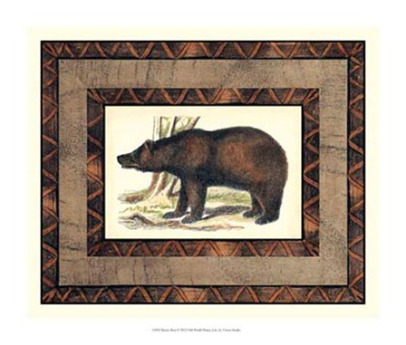 Rustic Bear by Vision Studio art print
