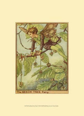 The Beech Tree Fairy by Vision Studio art print