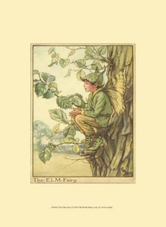 The Elm Fairy by Vision Studio art print