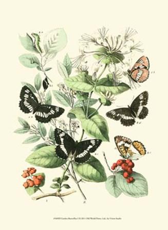 Garden Butterflies I by Vision Studio art print