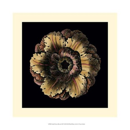 Small Classic Rosette III by Vision Studio art print