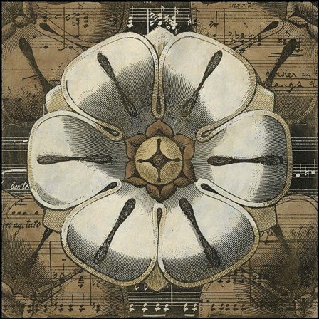 Rosette Detail I by Vision Studio art print