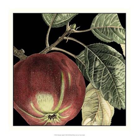 Dramatic Apple by Vision Studio art print