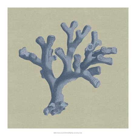 Chambray Coral II by Vision Studio art print