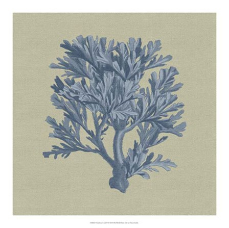 Chambray Coral IV by Vision Studio art print