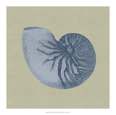 Chambray Shells II by Vision Studio art print