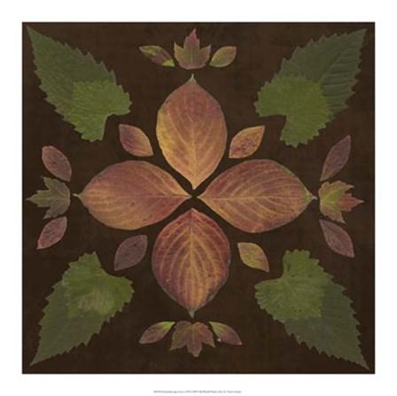 Kaleidoscope Leaves III by Vision Studio art print