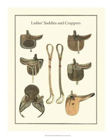 Ladies Saddles by Vision Studio art print