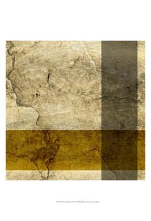 Modern Patina IV by Vision Studio art print