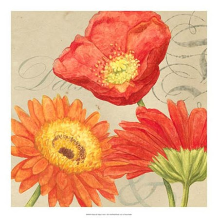 Daisies & Tulips I by Vision Studio art print