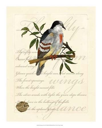 Romantic Dove II by Vision Studio art print